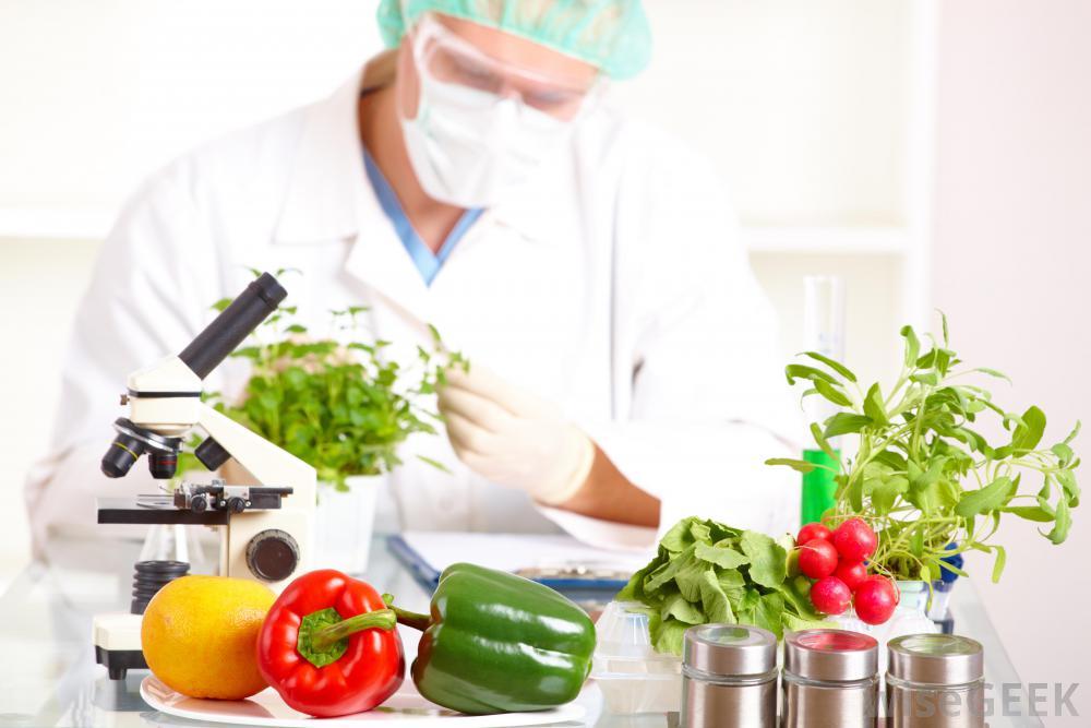 معرفی رشته علوم تغذیه و بازار کار علوم تغذیه و تغذیه انسانی تغذیه بالینی